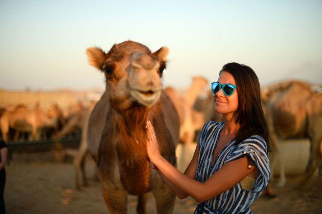 Побывать на сафари и прокатиться на настоящем верблюде